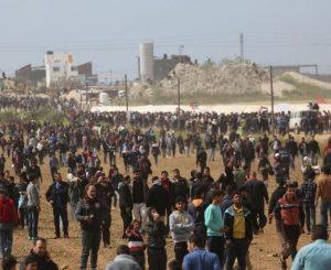 حماية : عجز المجتمع الدولي شجع إسرائيل على استخدام القوة المفرطة بحق المتظاهرين